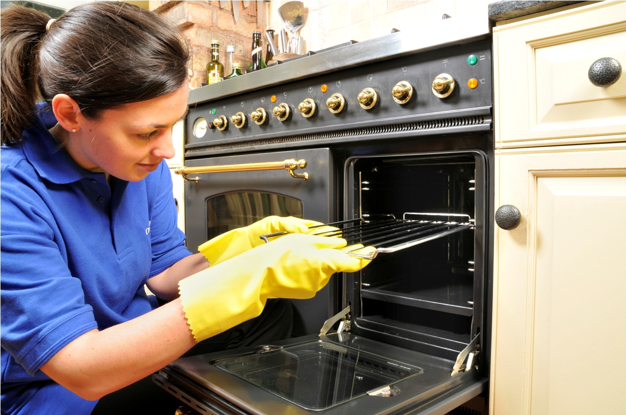 Ovenclean blog news recipes cleaning tips and more should i get professional oven cleaning solutioingenieria Gallery